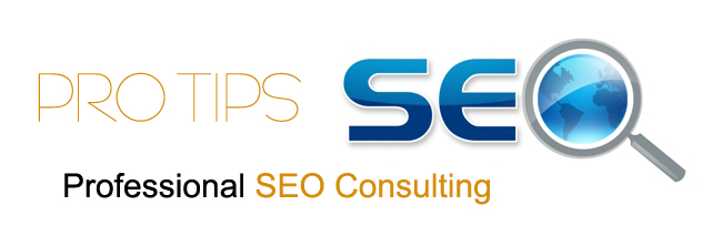 Pro Tips to Gear Up with Professional SEO Consulting for the Year 2013